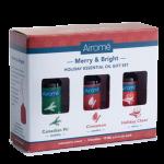 merry bright gift